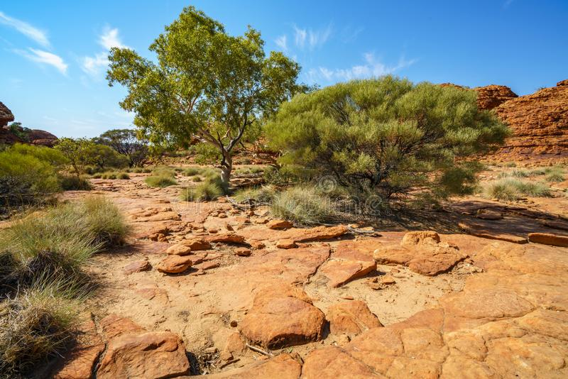 Hiking in kings canyon in the sun, watarrka national park, northern territory, australia 7. Hiking in kings canyon on a sunny day, watarrka national park stock photography