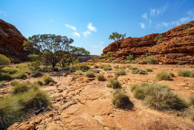 Hiking in kings canyon in the sun, watarrka national park, northern territory, australia 10. Hiking in kings canyon on a sunny day, watarrka national park royalty free stock photos