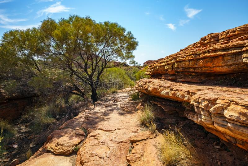 Hiking in kings canyon in the sun, watarrka national park, northern territory, australia 25. Hiking in kings canyon on a sunny day, watarrka national park royalty free stock photos