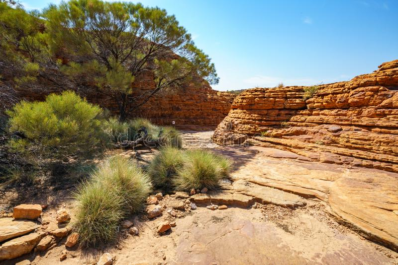 Hiking in kings canyon in the sun, watarrka national park, northern territory, australia 35. Hiking in kings canyon on a sunny day, watarrka national park royalty free stock photos