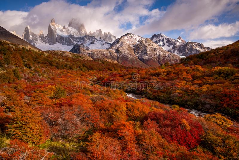 Snow-covered Mount Fitz Roy on beautiful fall day amongst forest of lenga trees. Hiking in Los Glaciares National Park on a beautiful fall day, taking in the royalty free stock photo