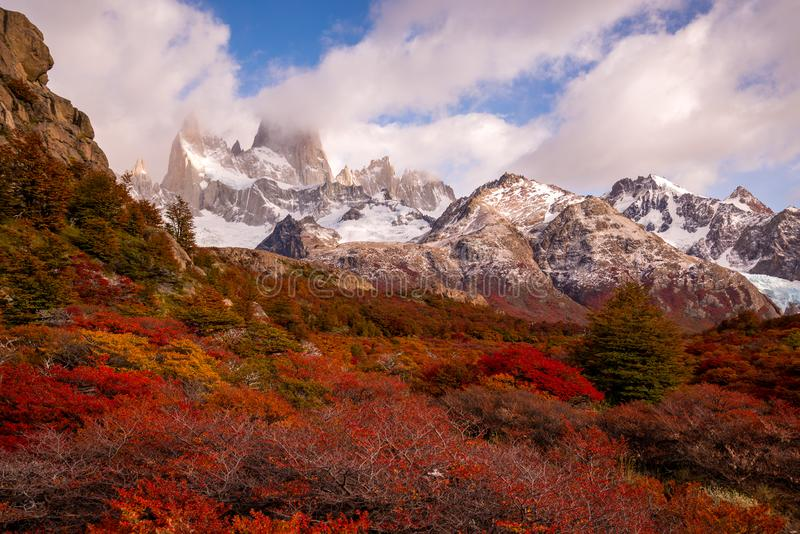 Snow-covered Mount Fitz Roy on beautiful fall day amongst forest of lenga trees. Hiking in Los Glaciares National Park on a beautiful fall day, taking in the royalty free stock images