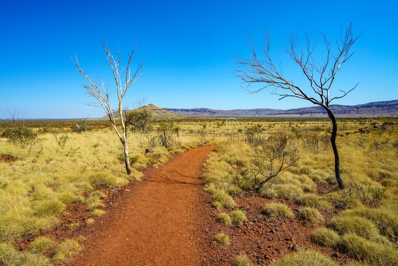Hiking on mount bruce in karijini national park, western australia 1 royalty free stock images