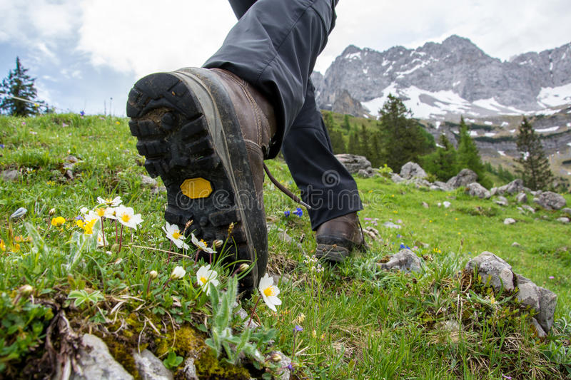 Hiking in the mountains with hiking boots. Hiking in the mountains with brown hiking boots and sticks royalty free stock images
