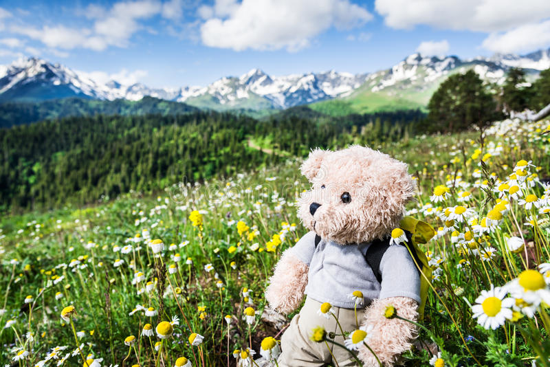 Hiking in mountains stock photography