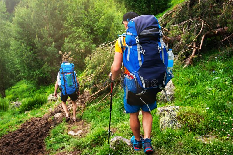 Hiking in mountains. Tourists with backpacks hike on wild trail. Trekking in forest stock images