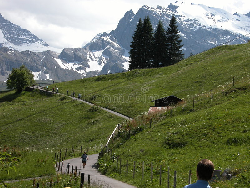 Hiking in Murren Country royalty free stock photography