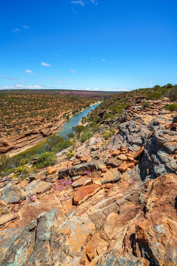 Hiking natures window loop trail, kalbarri national park, western australia 7 stock image