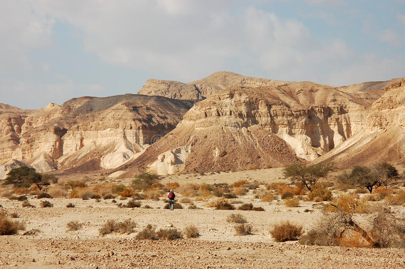 Hiking in Negev desert, Israel. royalty free stock photos