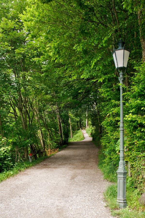 Download Hiking path stock photo. Image of lamp, metal, leaves - 25315002