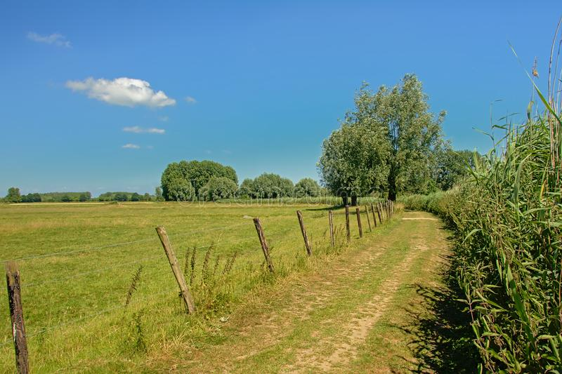 Hiking path along fields and meadows under a clear blue sky in Kalkense Meersen nature reserve, Flanders, Belgium. Hiking path along fields and meadows under a royalty free stock photos