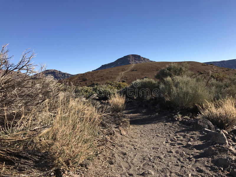 Hiking Path. Around Mount Teide a volcano on Tenerife in the Canary Islands royalty free stock photo