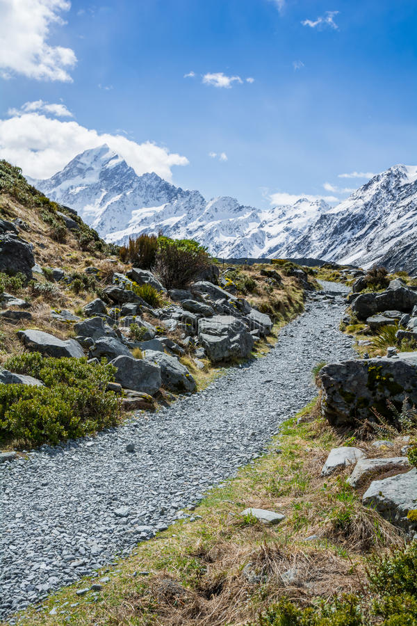 Hiking path to Mount Cook, New Zealand stock image