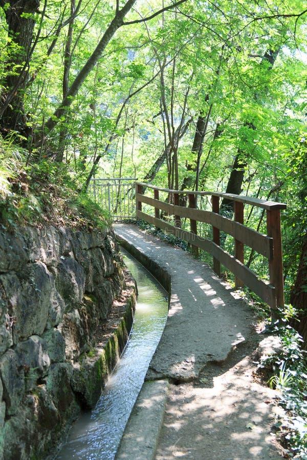 Free Hiking Path Waalweg With Irrigation Channel Near Merano In South Tyrol Royalty Free Stock Photo - 107652445