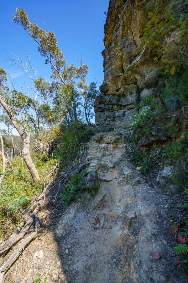 Hiking the prince henry cliff walk, blue mountains, australia 7 royalty free stock photos