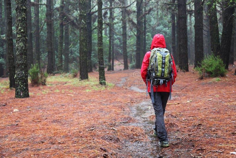 Hiking in rain stock photos