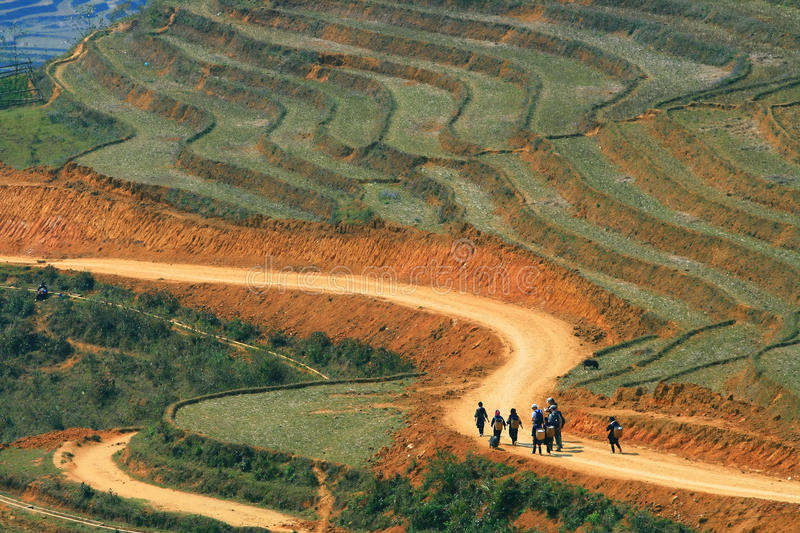 Hiking Sapa Vietnam. Traveller and hmong villager walk at Curve Dirt road in sapa with and paddle rice field stock photo
