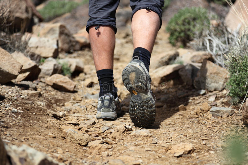 Download Hiking shoes stock photo. Image of male, desert, hikers - 14279348