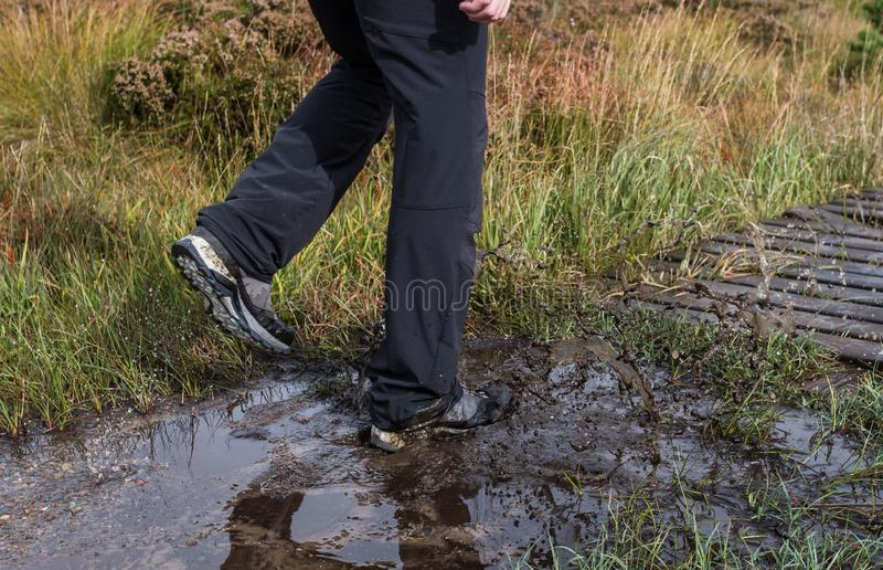 Hiking shoes on hiker in water puddle in rmountain landscape. Man hikers hike boots in closeup. Male feet. Close-up royalty free stock photos