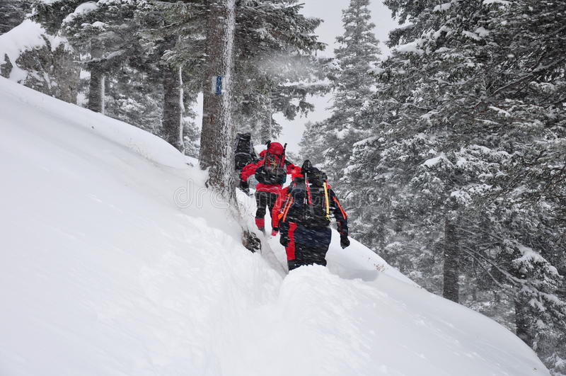 snowshoe hiking - winter vacation & sport in Austria at ... |Hiking Snow