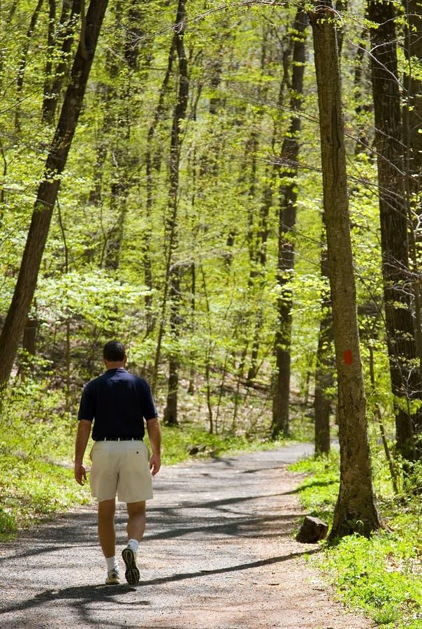 Free Hiking Through The Woods Stock Photos - 2369973