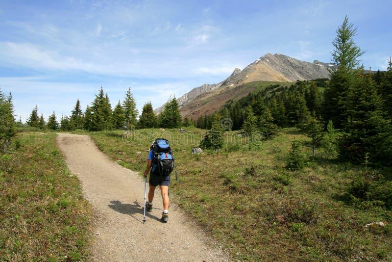 Hiking Towards Mount Rae royalty free stock photography