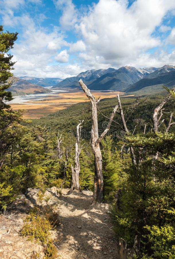 Hiking track in Arthur`s Pass National Park, New Zealand royalty free stock photography