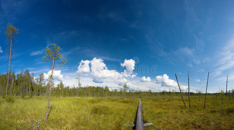 Download Hiking Trail Royalty Free Stock Image - Image: 10558806