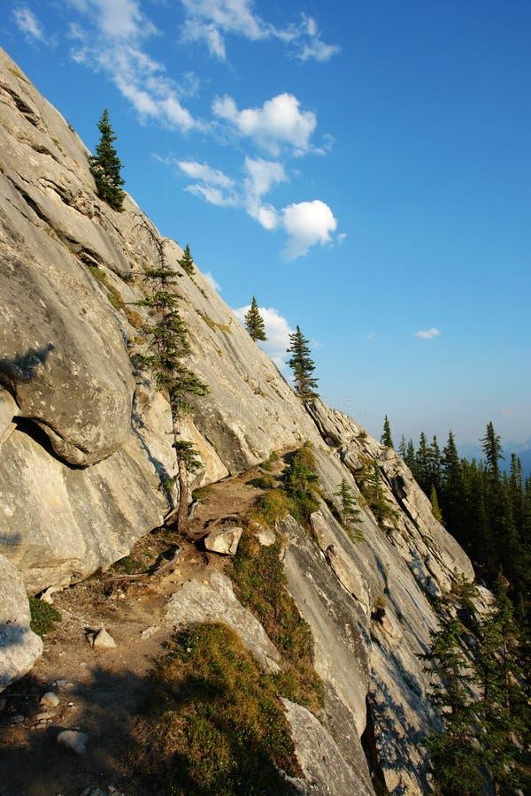 hiking trail stock photos
