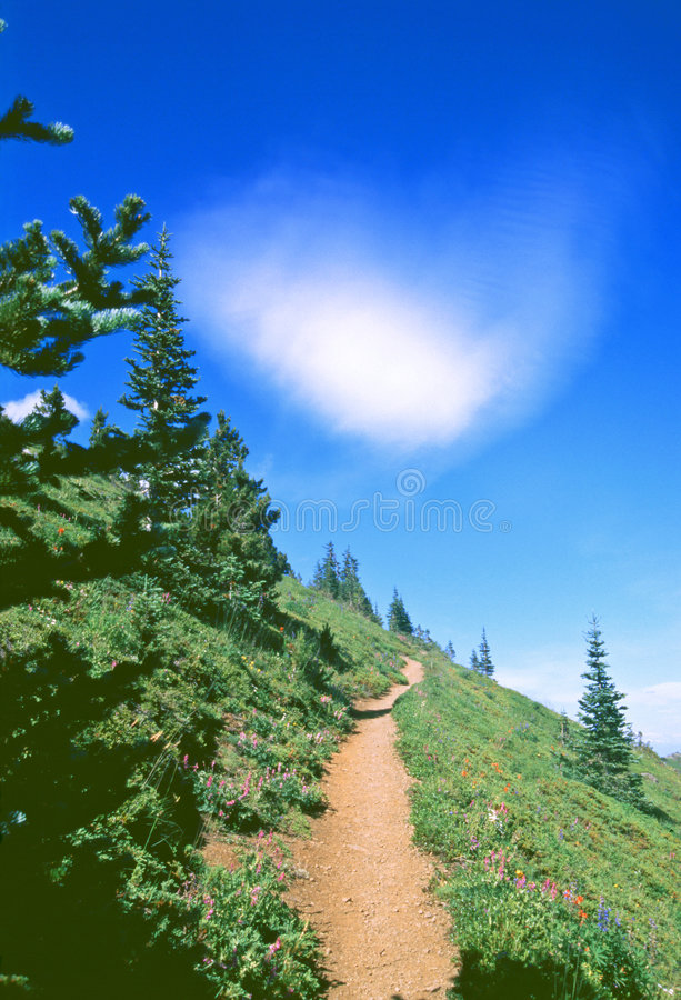 Hiking trail stock images