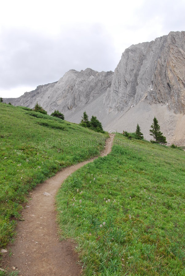 Download Hiking Trail On Alpine Meadow Stock Photo - Image: 6178834