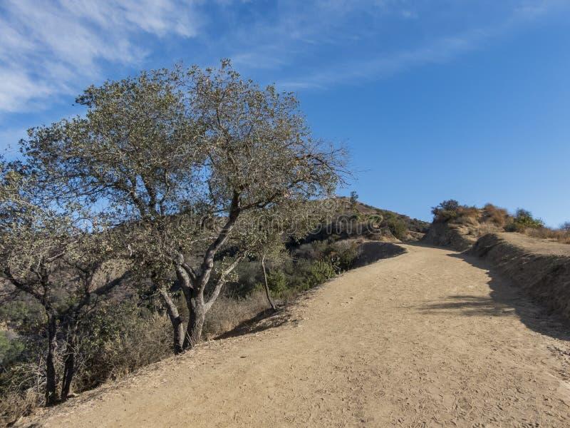 Hiking trail around San Gabriel Mountain. At Los Angeles stock photo