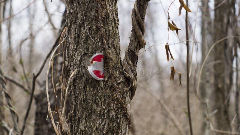 Hiking trail arrow royalty free stock photos