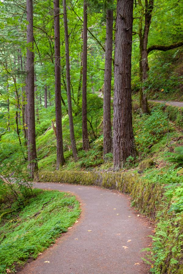 A hiking trail in the Columbia River Gorge, Oregon stock photo
