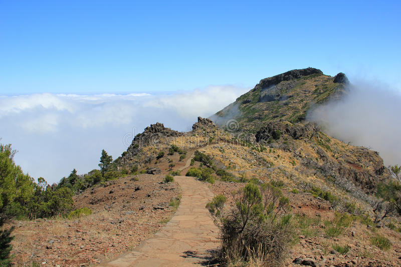 Hiking trail in Madeira stock images