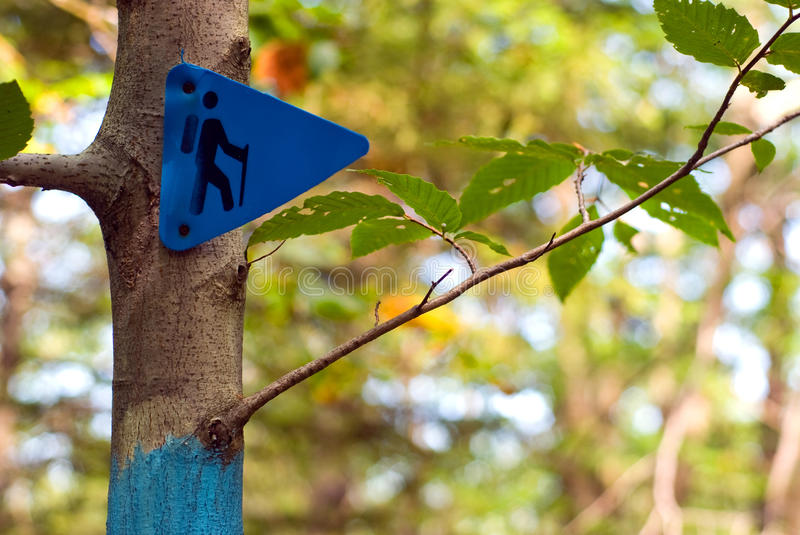 Download Hiking Trail Marker On A Tree In A Forest Royalty Free Stock Photography - Image: 17109017