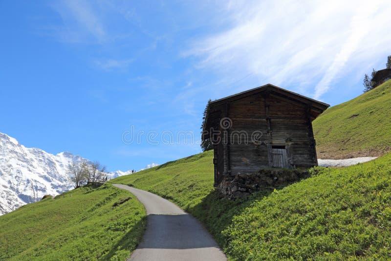 Hiking Trail nära Murren arkivfoton