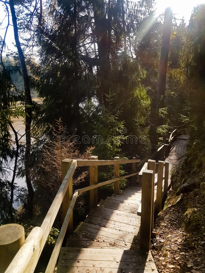 Hiking trail at the national park in Latvia. Wooden stairs above the river.   Autumn in Latvia. Tourist spot. Hiking trail at the national park in Latvia royalty free stock images