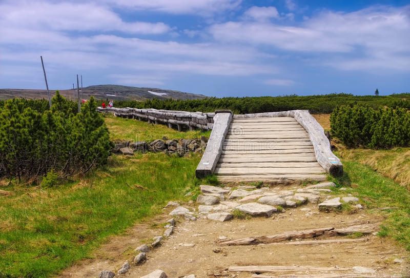 Hiking trail in peatbog in Giant Mountains stock photography