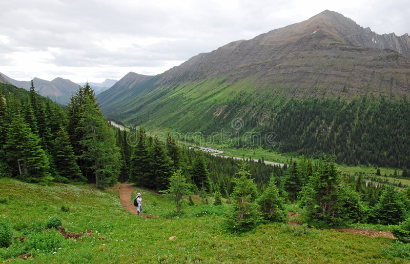Download Hiking Trail On Ptarmigan Cirque Stock Image - Image: 6148411