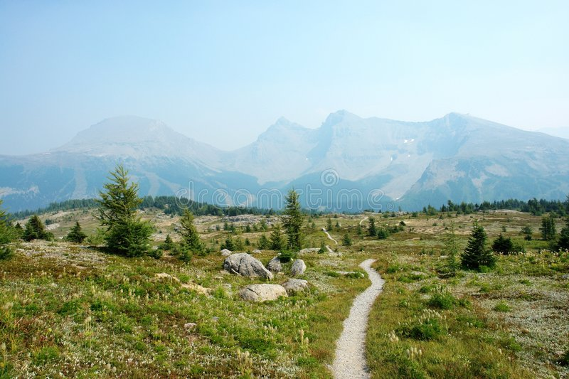 Hiking trail in sunshine stock photo