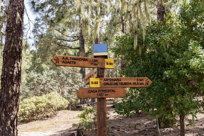 Hiking trail in Tamadaba Natural Park in Gran Canaria. Spain royalty free stock photography