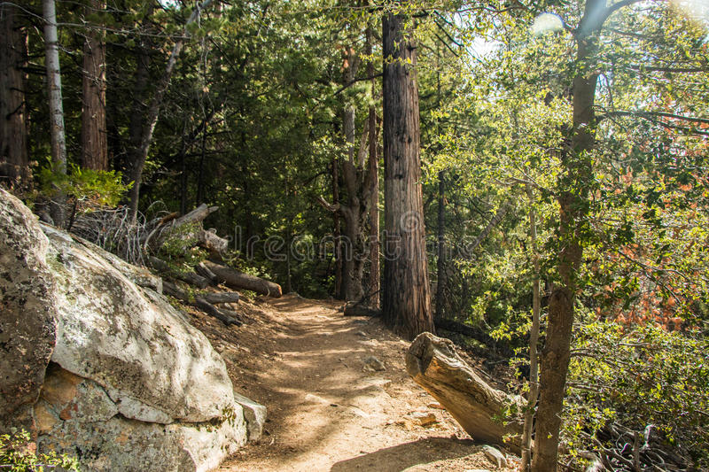 Hiking Trails royalty free stock photo