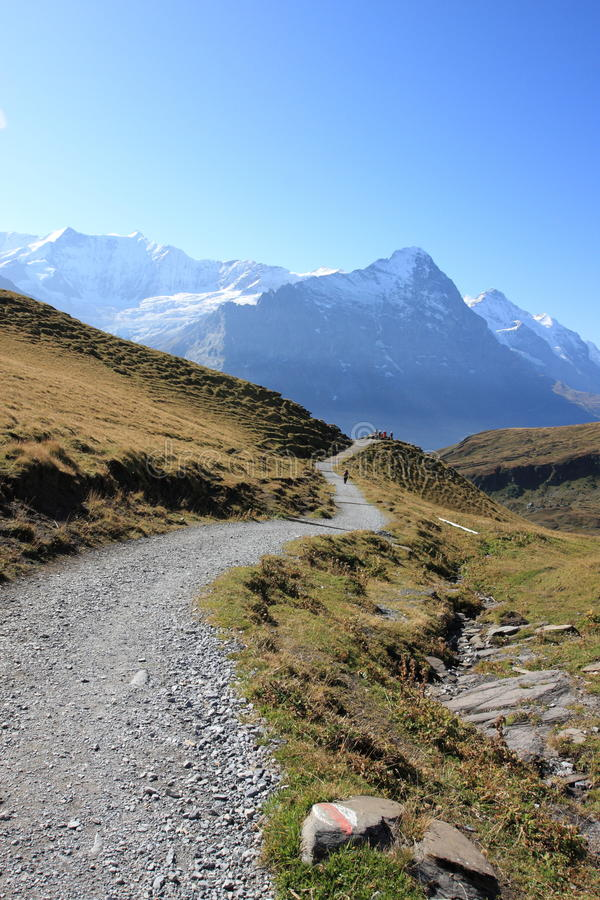 Download Hiking Trails To Jungfrau Swiss Alps Stock Image - Image: 16629719