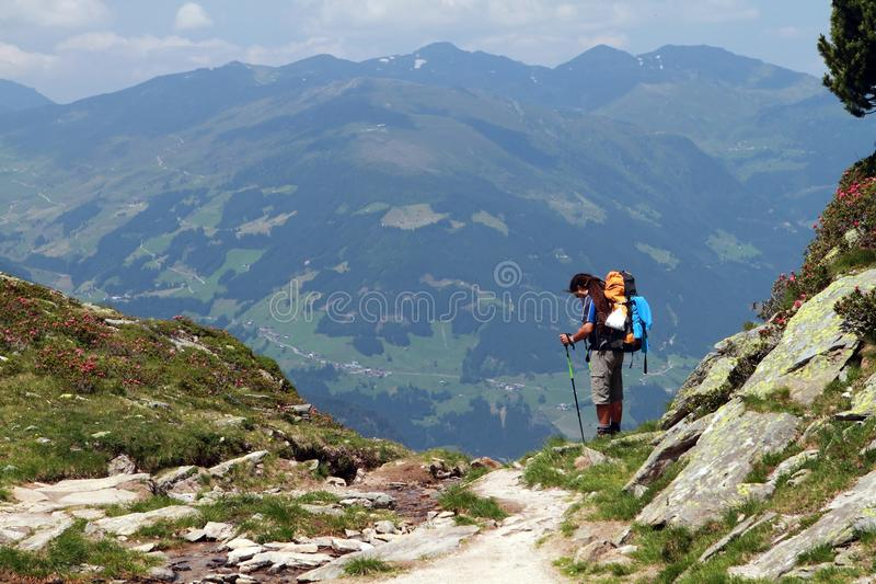 Hiking, trekking in the Alps royalty free stock photo