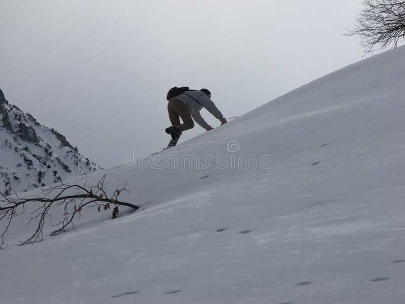 Vertical climb on a steepy mountain slope covered by snow. The hiker is climbing with both hands and foot. It is a cloudy winter day stock photos