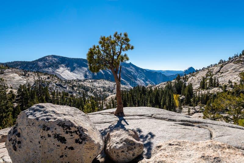 Yosemite`s backcountry at golden hour. Hiking through Yosemite National Park`s backcountry during golden hour for incredible mountain vistas stock photos
