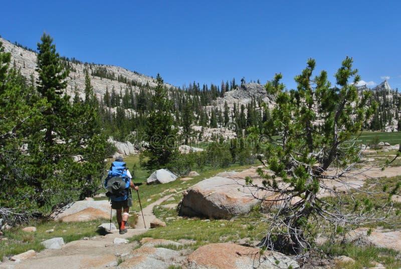 Hiking Yosemite royalty free stock images