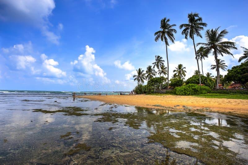 Hikkaduwa-Strand, Sri Lanka stockfotografie