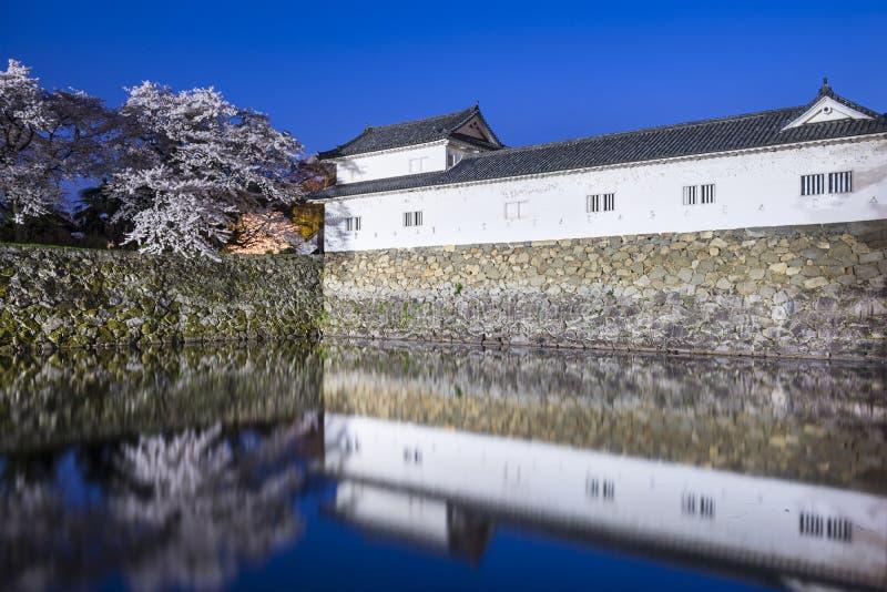 Hikone Castle stock fotografie
